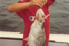Chesapeake-Bay-Bottom-fishing